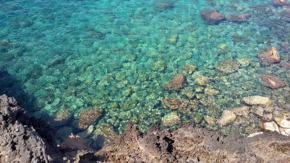 bue-marino-fondali