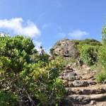 Punta Spadillo e Cala Cinque Denti: Le foto di Marco Copat