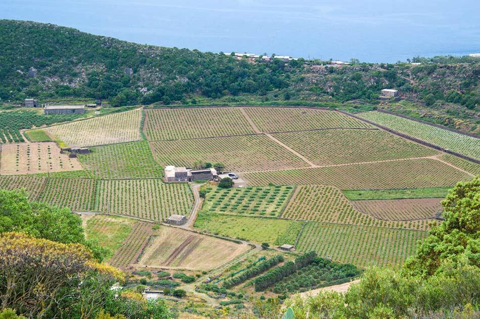 visitare-pantelleria-valle-monastero