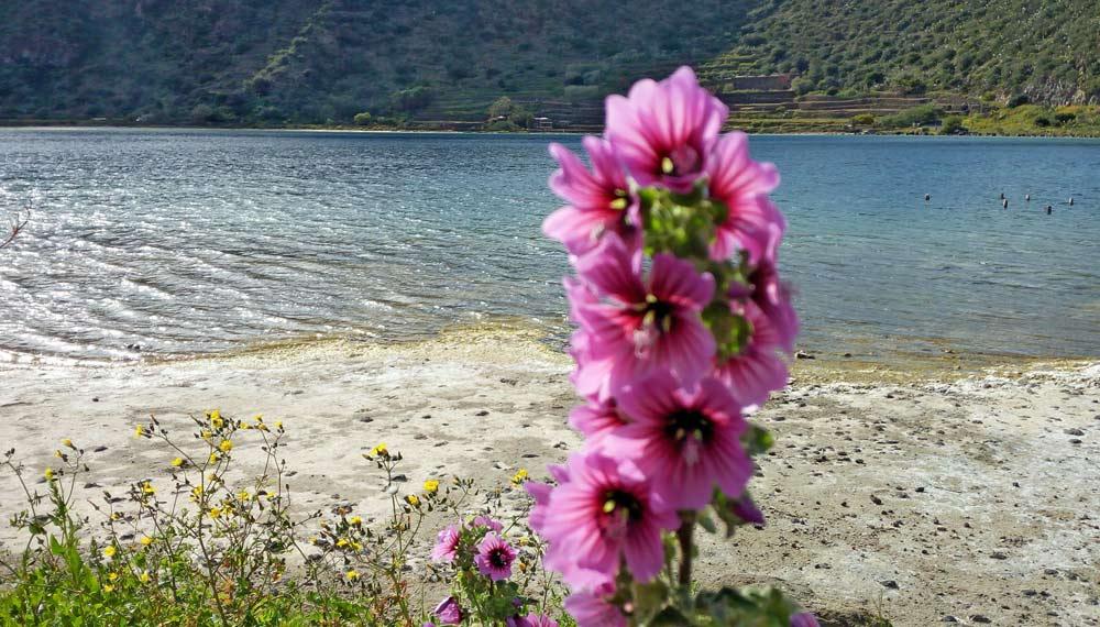 primavera-a-pantelleria-lago-specchio-di-venere-marco-cirinesi